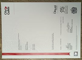 City & Guilds diploma